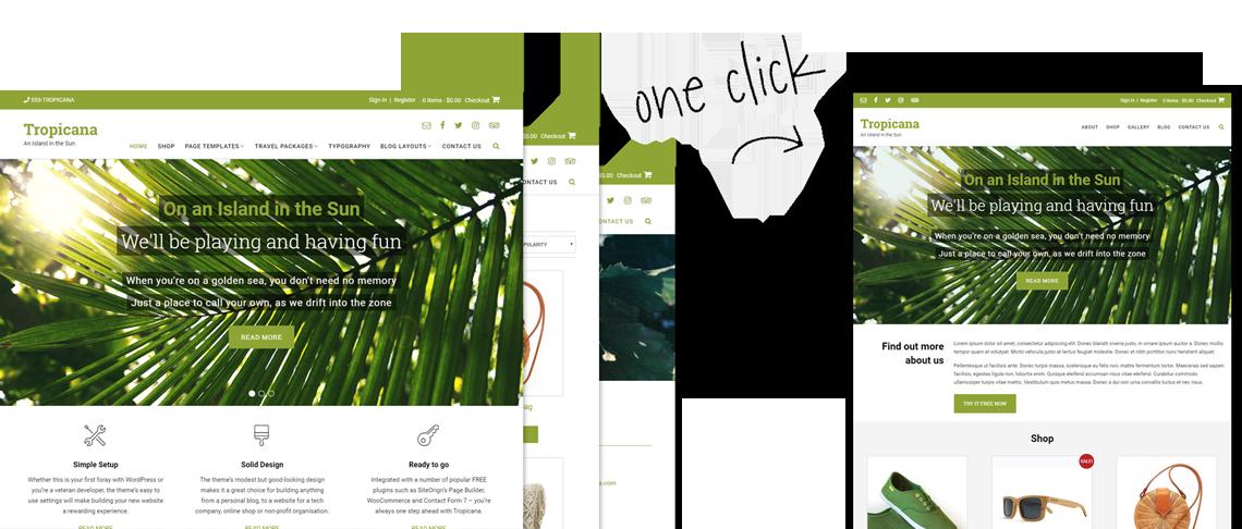 Tropicana WordPress theme one page site