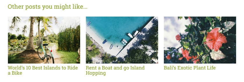WordPress plugin related posts Same but Different screenshot