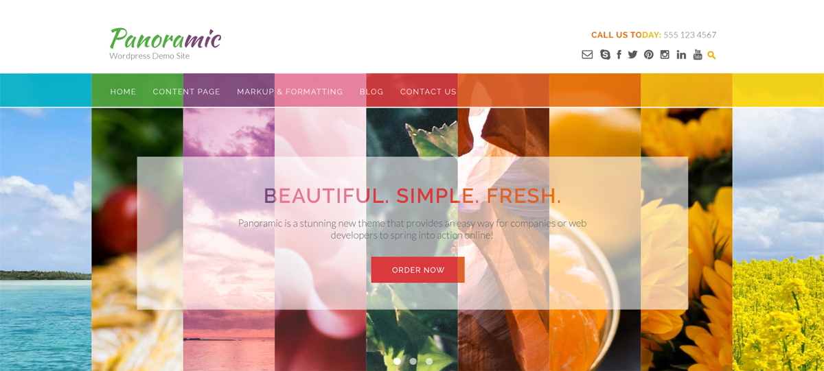 Panoramic WordPress theme color schemes