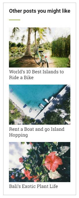 WordPress plugin related posts widget Same but Different screenshot
